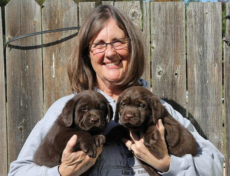 Deb and Hammer Puppies
